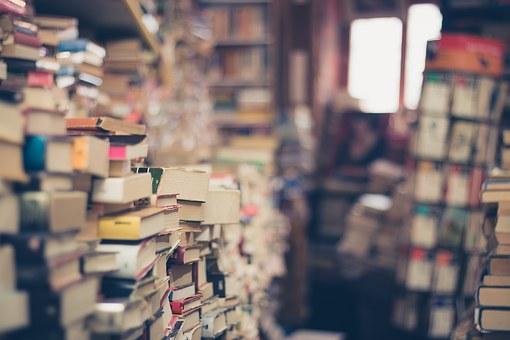 LAS BIBLIOTECAS CASERAS.  (Diego Santos Márquez)
